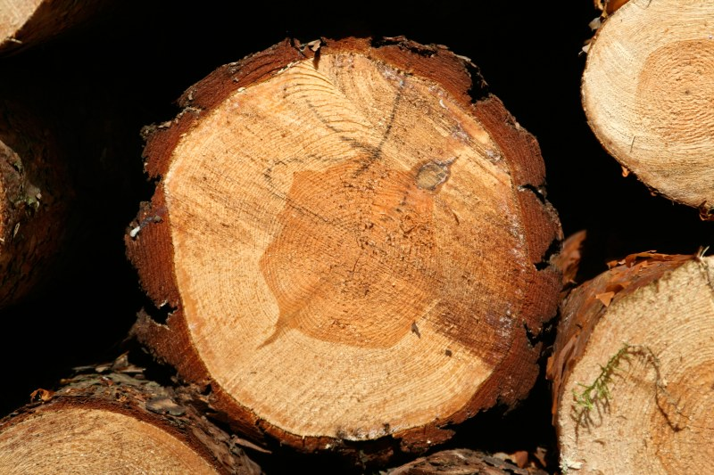 Zasady kontroli i regulacja procesu suszenia oraz programy suszenia drewna