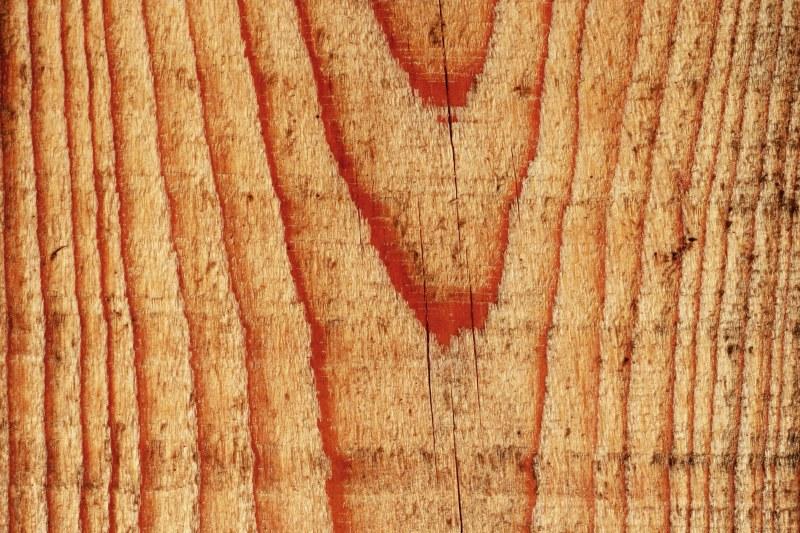 Trwałość drewna